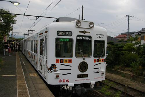 T3231